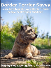border-terrier-ebook